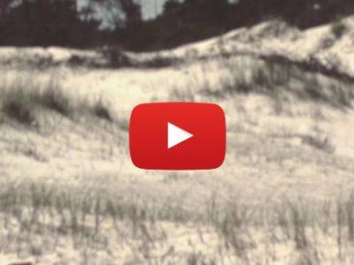 """Y. GALLO presenta el videoclip de la canción """"GUSANO AMIGO"""""""